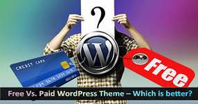 Бесплатный и Платный WordPress
